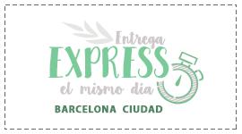 Envío Express Barcelona