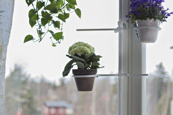 Kukka-asetelma äidin keittiön ikkunan kukkatelineessä