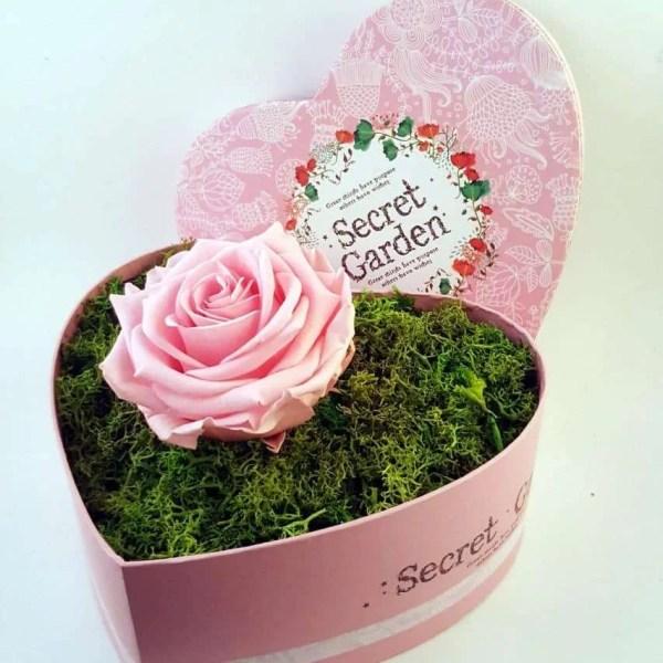 trandafir natural criogenat
