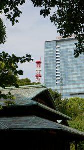 Japan Reisebericht 2016: Tokyo: Garten des Kaiserpalastes