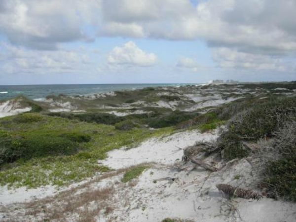Topsail Hill Preserve State Park Has Majestic 25 Foot Tall