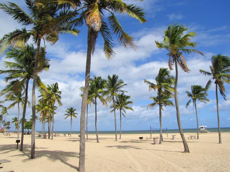 Heiraten an den schnsten Strnden in Florida  Florida