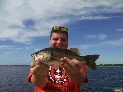 An Old Bait Comes To The Rescue On Lake Toho