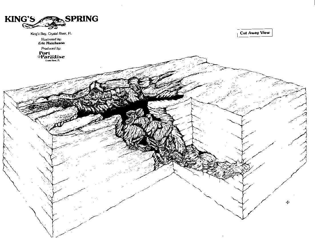 springs map chart crystal river florida