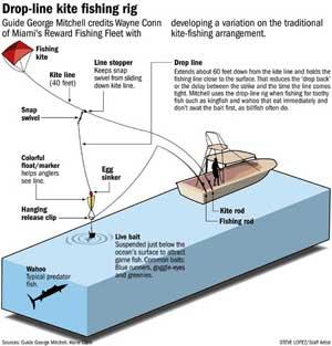 Offshore Fishing  Florida Go Fishing
