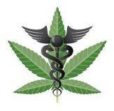 medical marijuana law Florida