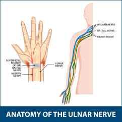 Ulnar Nerve Diagram Tape Anchor Chart Multiplication Neuritis Information Florida Orthopaedic Institute Anatomy