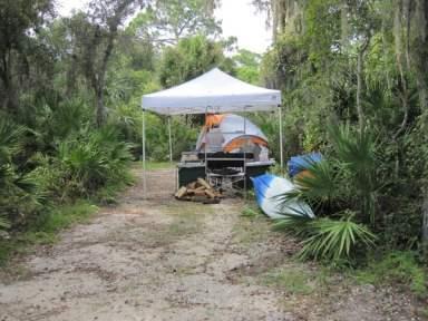 Camping at Oscar Scherer State Park
