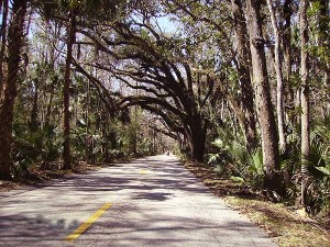 Florida scenic drives: The Scenic Loop and Trail in Ormond Beach, Florida