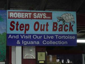 Florida find: Robert Is Here fruit stand, Homestead, Florida