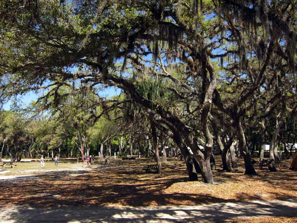 Tent sites at Camp Venice