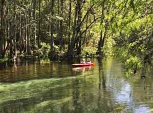 Canoe at Ichetucknee Springs State Park. (Photo: Bonnie Gross)