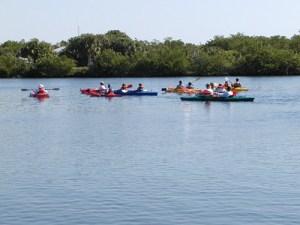 Paddline Estero Bay