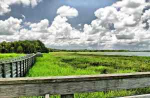 Birdwalk at Myakka River State Park