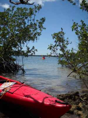 Florida kayaking: Indian Keys State Park