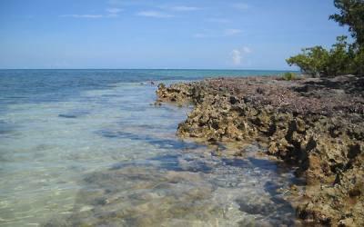 Florida snorkeling at Indian Key State Park