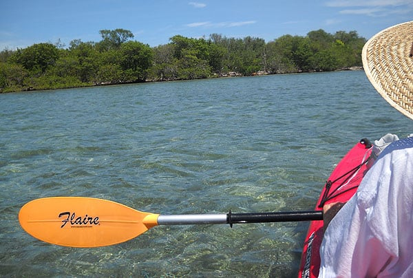 Ten best kayaking spots in South Florida