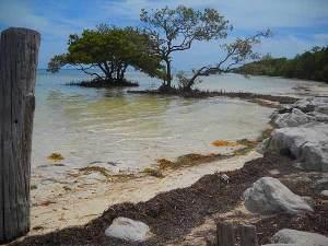 Anne's Beach, Florida Keys