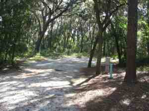 Lithia Spring Park Site #25