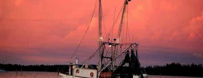 Fort Myers Beach shrimp boat by Albert Heaps via Flickr