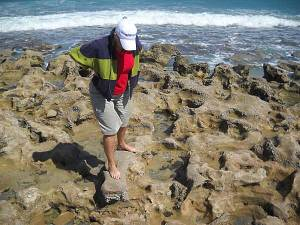 Worn rocks Blowing Rocks, Jupiter, Florida, beach