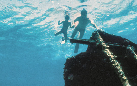 Family snorkels the Mandalay shipwreck, Biscayne National Park