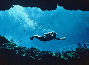 Peacock Springs diver