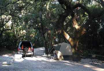 Campsite at Lithia Springs Park