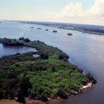 Kayaking the Indian River Lagoon
