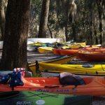 2011 Suwannee River paddlethon