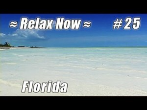 Bahia Honda beach video