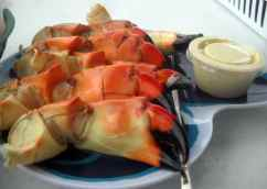 Stone crabs from Triad Seafood, Everglades City