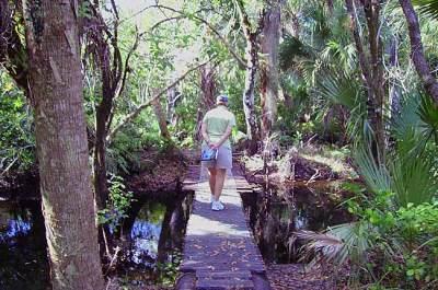 Jonathan Dickinson State Park hiking trail