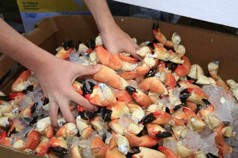 Key Largo Seafood Festival 2020 Marathon Seafood Festival: The original, March 14 15, 2020
