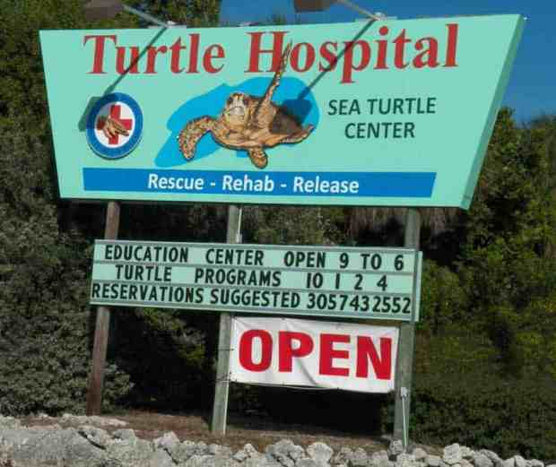 Sign beckons to the Turtle Hospital, Marathon, Florida.