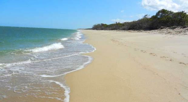 Hidden beach at St. Lucie Inlet Preserve State Park in Florida