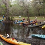 Paddle Florida: 2018-19 kayak trips explore Florida's top waterways