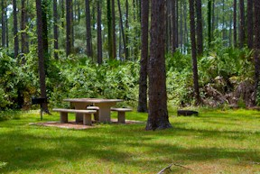Lake Dorr campground
