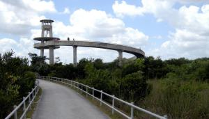 The observation tower at Shark Valley in Everglades National Park. (Photo: Wikimedia.)