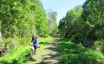 The 12-mile Corkscrew Bird Rookery Swamp Trail is popular with bicyclists on hyprid or mountain bikes.