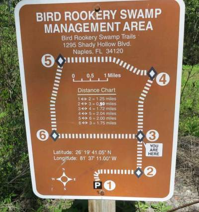Corkscrew Bird Rookery Swamp Trail has excellent signage.