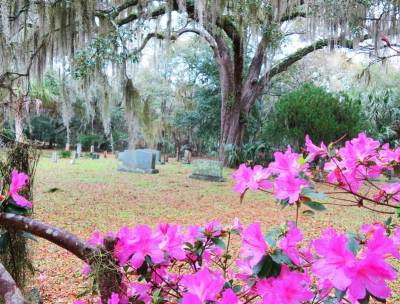 Old cemetery along Withlacoochee State Trail in Inverness.