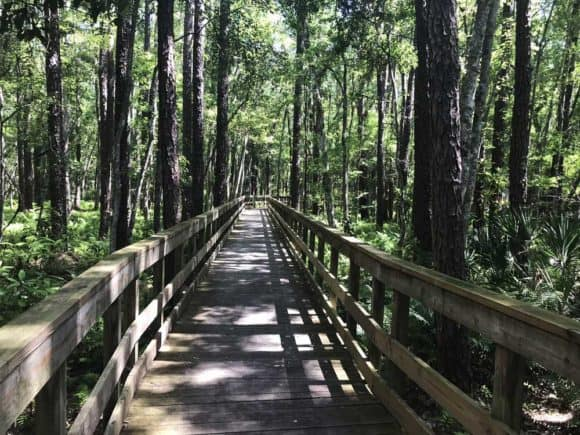 This long boardwalk gets you from the washroom/rest stop to Camp Milton along the Jacksonville-Baldwin Bike Trail. On this side tour, you can learn about Florida's role in the Civil War.(Photo: Bonnie Gross)