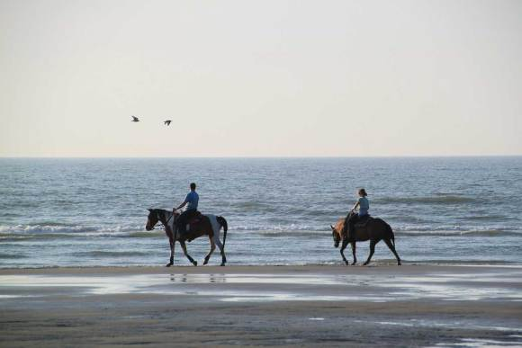 Beach horseback riding.