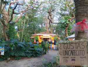 • The Latin Corner is a colorful little yellow hut under the trees that serves Cuban coffee, sandwiches, and juices enjoyed at open-air tables.