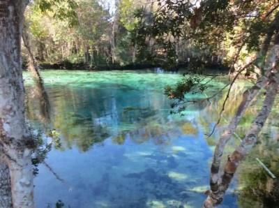 Three Sisters Springs in Crystal River