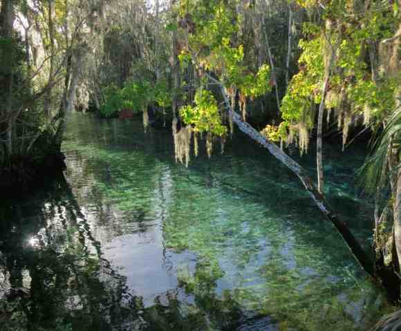 Three Sisters Springs in Crystal River