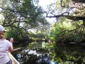 Telegraph Creek near Fort Myers