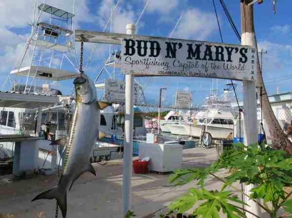 We paused on our bike ride through the Keys to take in the view at Bud N Mary's Marina.
