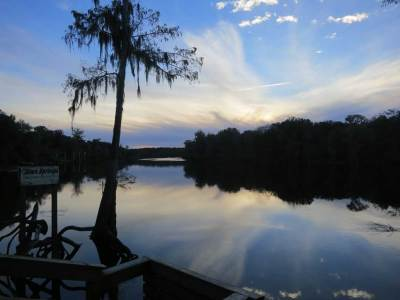 Hart Springs County Park has a beautiful boardwalk from the spring out to the Suwanee River, where this is the view.